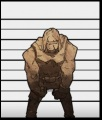 Hard Rock Golem.JPG